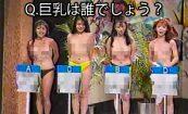 【伝説の深夜番組】11PMの名物企画、おっぱい当てクイズの動画